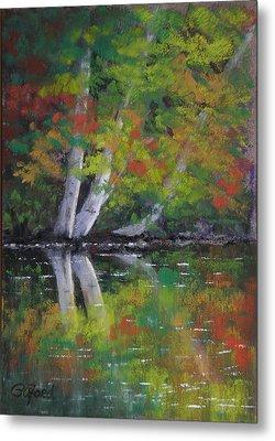 Autumn Reflections Metal Print by Paula Ann Ford