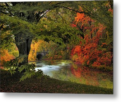 Metal Print featuring the photograph Autumn Reverie by Jessica Jenney