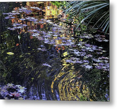 Metal Print featuring the photograph Autumn Ripples by Linda Geiger