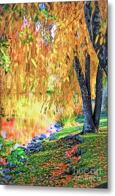 Metal Print featuring the photograph Autumn Scenery At The Virginia Tech Duck Pond by Kerri Farley