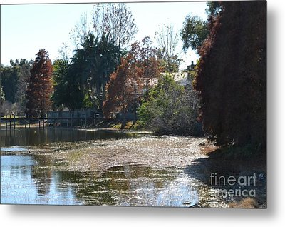 Metal Print featuring the photograph Autumn Serenity by Carol  Bradley