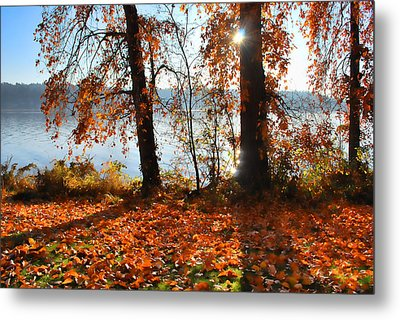 Autumn. Metal Print by Sergey and Svetlana Nassyrov