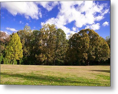 Autumn Skies Metal Print by Bill Cannon