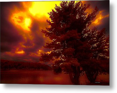 Autumn Skies L.junaluska Metal Print