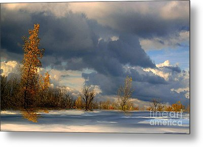 Metal Print featuring the photograph Autumn Skies  by Elfriede Fulda