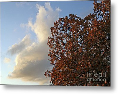 Autumn Sky Metal Print by Jeannie Burleson
