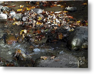 Autumn Soup Metal Print