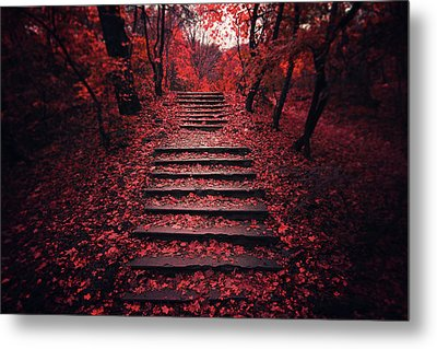 Autumn Stairs Metal Print by Zoltan Toth
