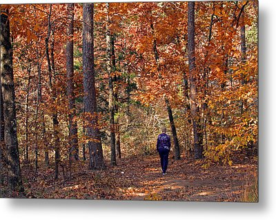 Autumn Stroll Metal Print by Gayle Johnson