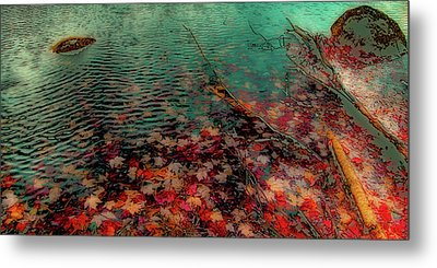 Metal Print featuring the photograph Autumn Submerged by David Patterson