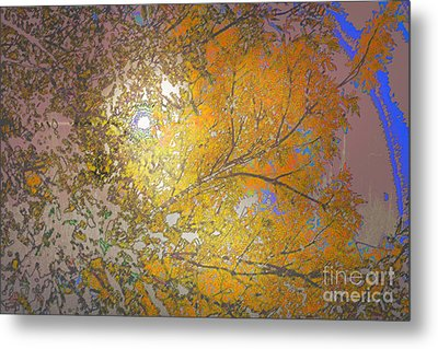 Autumn Sun Metal Print