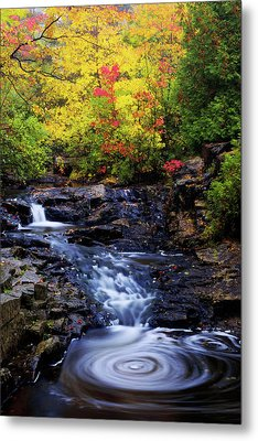 Autumn Swirls Metal Print by Chad Dutson