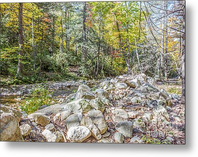 Autumn Trail Metal Print by A New Focus Photography