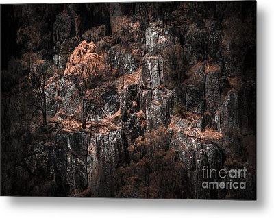 Autumn Trees Growing On Mountain Rocks Metal Print by Jorgo Photography - Wall Art Gallery