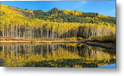 Autumn Trees Reflecting On Willow Lake In Utah Metal Print