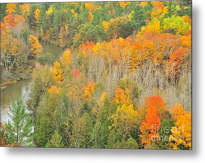 Autumn Treetops At The River Bend Metal Print