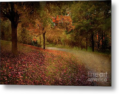 Autumn Walk Metal Print by Elaine Manley