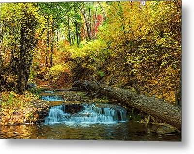 Metal Print featuring the photograph Autumn Waterfall by Anthony Citro