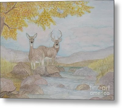 Autumn Watersong Metal Print
