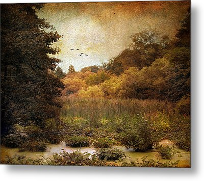 Autumn Wetlands Metal Print