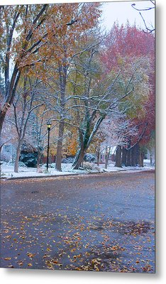 Autumn Winter Street Light Color Metal Print by James BO  Insogna