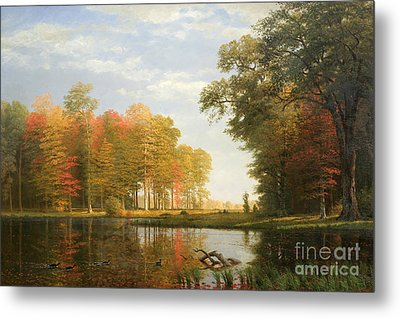 Autumn Woods Metal Print by Albert Bierstadt