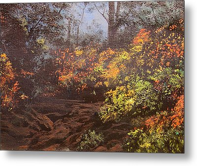 Autumn Woods Metal Print by Connie Tom
