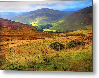 Metal Print featuring the photograph Autumnal Hills. Wicklow. Ireland by Jenny Rainbow