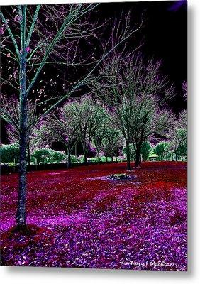 Autumnal Reversography Metal Print