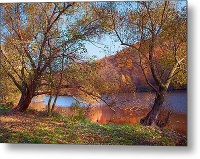 Autumnal Trees By The Lake Metal Print