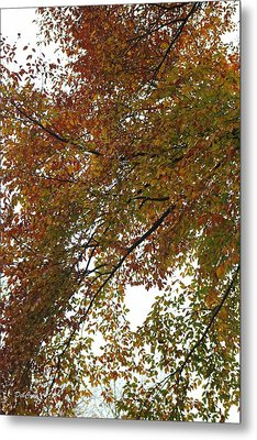 Metal Print featuring the photograph Autumn's Abstract by Deborah  Crew-Johnson