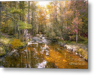 Autumn's Blessings Metal Print by A New Focus Photography