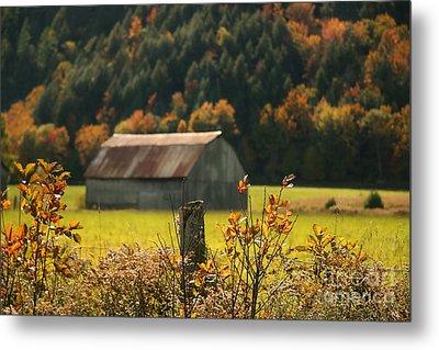 Autumns Colors Metal Print by Sandra Cunningham