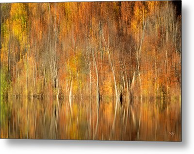 Metal Print featuring the photograph Autumns Final Palette by Everet Regal