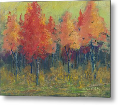 Autumn's Glow Metal Print by Lee Beuther