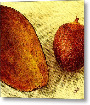 Avocado Seed And Skin II Metal Print by Ben and Raisa Gertsberg