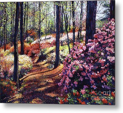 Azalea Forest Metal Print by David Lloyd Glover
