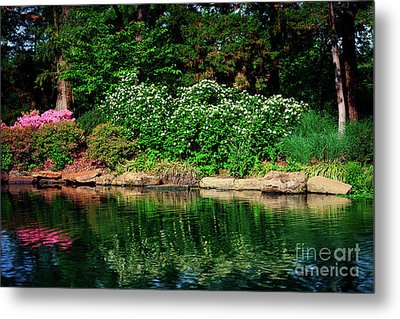 Azalea Reflection At Honor Heights Park Metal Print by Tamyra Ayles