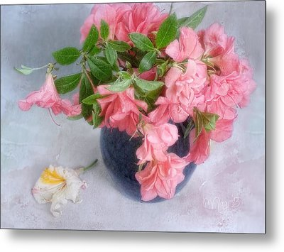 Metal Print featuring the photograph Azalea Time by Louise Kumpf