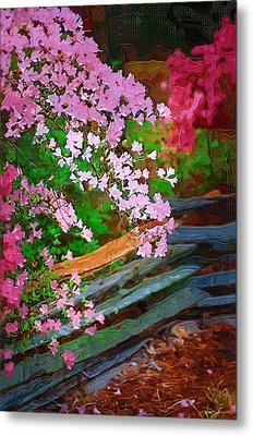Metal Print featuring the photograph Azaleas Over The Fence by Donna Bentley