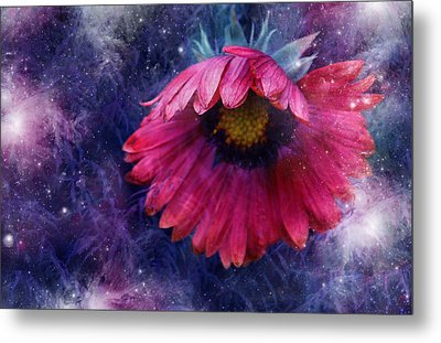 Metal Print featuring the photograph Azure Claret by Kathleen Stephens
