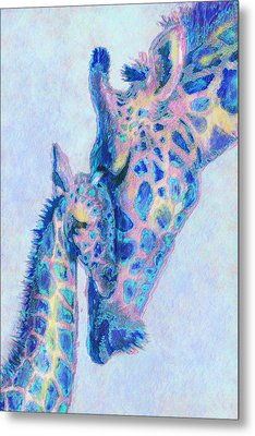 Baby Blue  Giraffes Metal Print