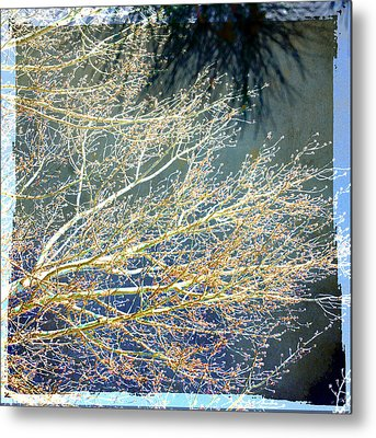 Baby It's Cold Out There Metal Print