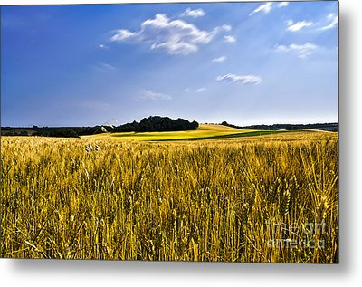 Background Metal Print by Alessandro Giorgi Art Photography