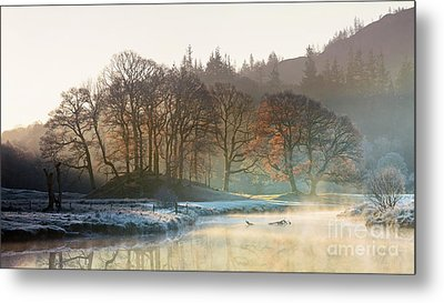 Backlit Trees On The River Brathay Metal Print