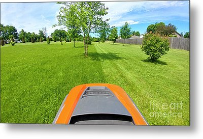 Metal Print featuring the photograph Backyard Mowing by Ricky L Jones