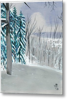 Backyard Snow Metal Print