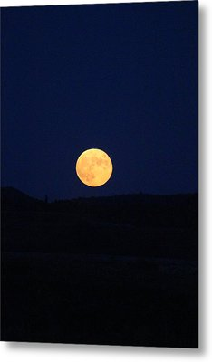 Bad Moon Rising Metal Print by Julie Smith