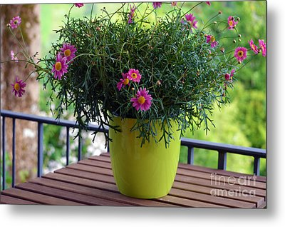 Metal Print featuring the photograph Balcony Flowers by Susanne Van Hulst