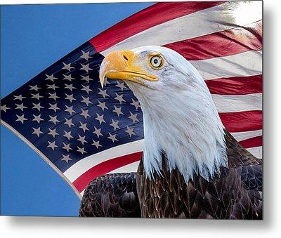 Bald Eagle And American Flag Metal Print